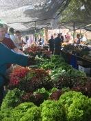Pollenca market veg